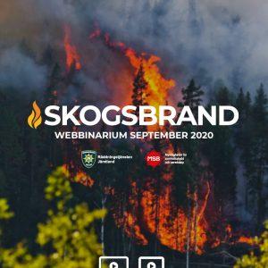 Skogsbrand 2020