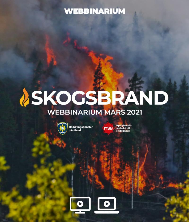 Skogsbrand 2021